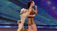 The impressive dog and human act that is Ashleigh and Pudsey, wowed again on the Britain's Got Talent 2012 and we are convinced it must be something in the Dog's...