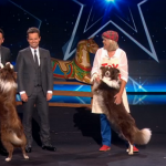Jules O'Dwyer, Matisse and best friend Chase  Dog routine impressed on the second semi final of Britain's Got Talent 2015