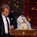Frenchman Marc and Miss Wendy  the dog impressed sing I'll be there on the fourth semi final of Britain's Got Talent 2015