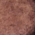 Nigel Barden Chocolate Orange Macaroon Torte recipe on Radio 2 Drivetime