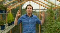 You have made the decision to buy a greenhouse but where do you start? Diarmuid Gavin gave a few tips in today's episode of the Great British Garden Revival. Make […]