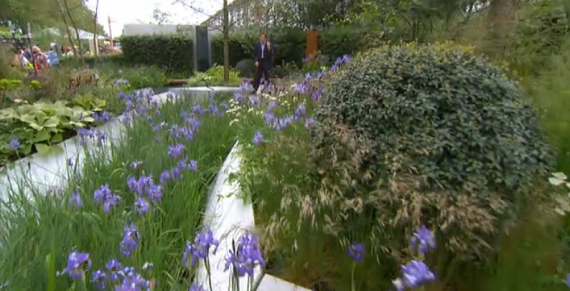 hugo-bugg-garden