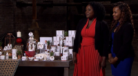 Helen and Mariah pitched their Daughter of The Soil African skincare products for investment on Dragons' Den. The businesswomen cake to the Den seeking an investment of £60,000 for a […]